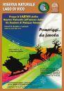 b_0_130_16777215_00_images_stories_eventi_locandina-favole-bosco-dicembre.jpg