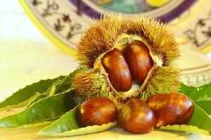 Leggi tutto: Festa della Castagna di Caprarola